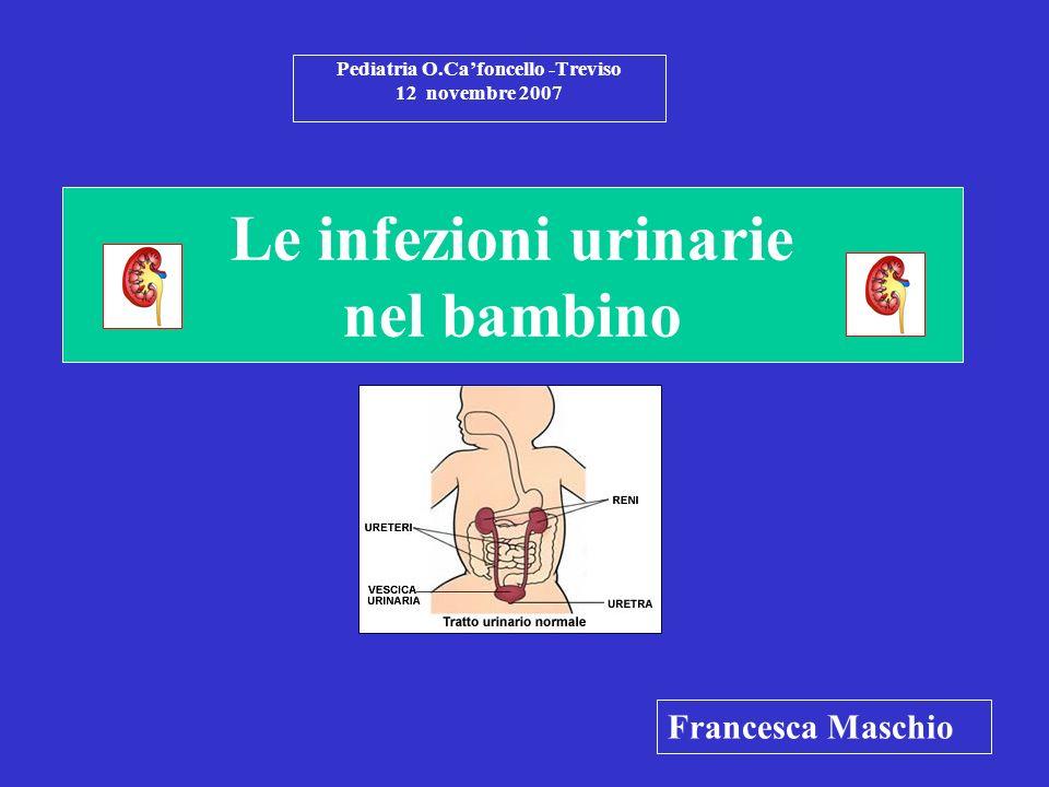 Le infezioni urinarie nel bambino Pediatria O.Cafoncello -Treviso 12 novembre 2007 Francesca Maschio