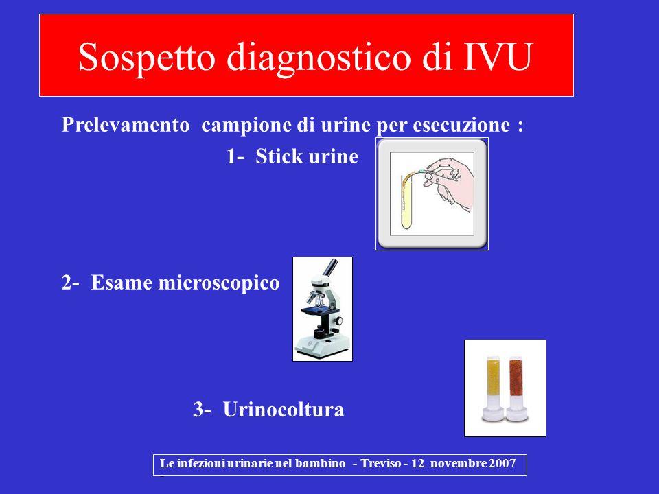 Sospetto diagnostico di IVU Le infezioni urinarie nel bambino - Treviso - 12 novembre 2007 - Prelevamento campione di urine per esecuzione : 1- Stick
