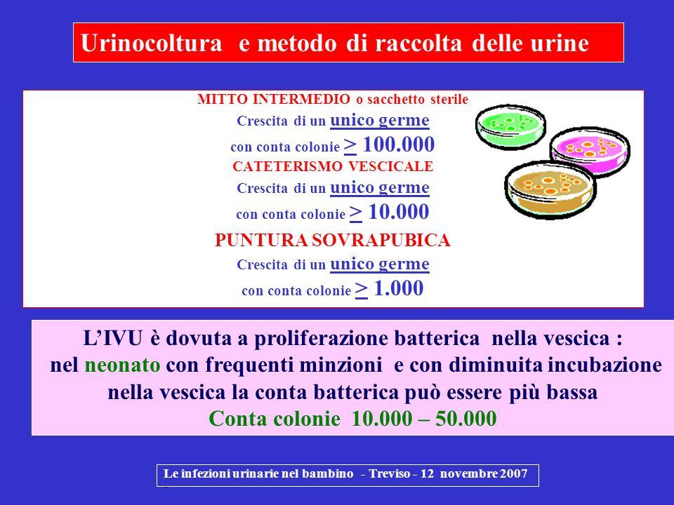 Le infezioni urinarie nel bambino - Treviso - 12 novembre 2007 - MITTO INTERMEDIO o sacchetto sterile Crescita di un unico germe con conta colonie > 1