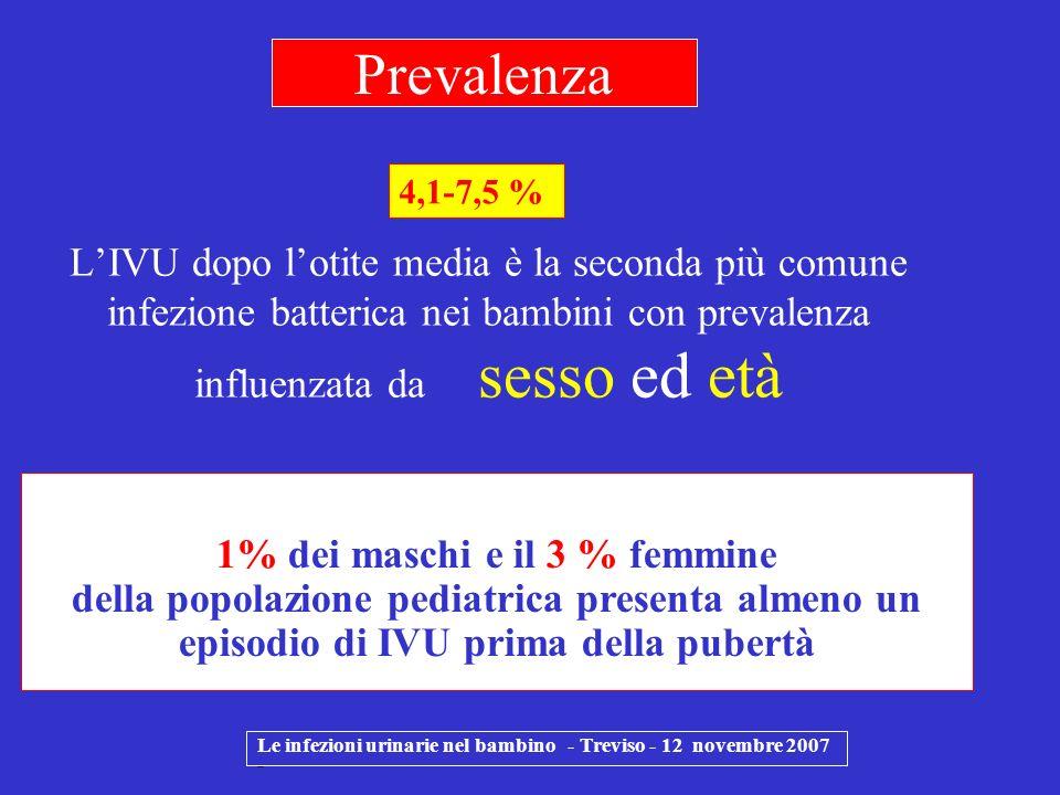 Nei primi mesi di vita maggior incidenza di IVU nei maschi per una maggior incidenza di patologie malformative nel sesso maschile Tra 1 e 2 anni di vita la prevalenza di IVU è di 8,1 % nelle femmine e 1,9 % nei maschi (0,2 % nei circoncisi ) Le infezioni urinarie nel bambino - Treviso - 12 novembre 2007 - La frequenza nei bambini non circoncisi è 20 volte più alta Prevalenza per sesso