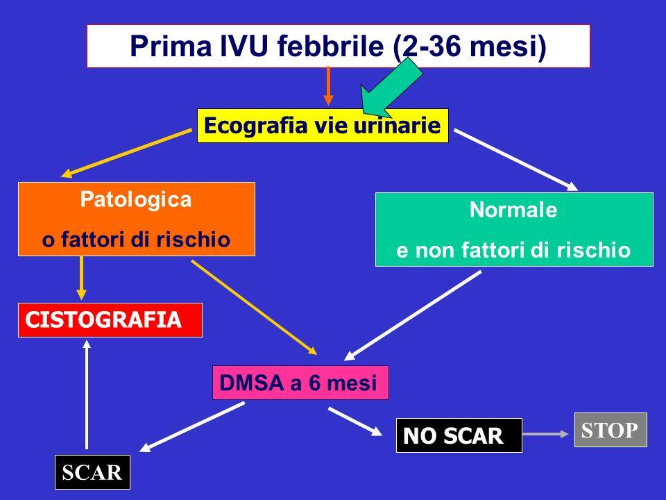 Prima IVU febbrile (2-36 mesi) Ecografia vie urinarie Patologica o fattori di rischio Normale e non fattori di rischio CISTOGRAFIA DMSA a 6 mesi NO SC