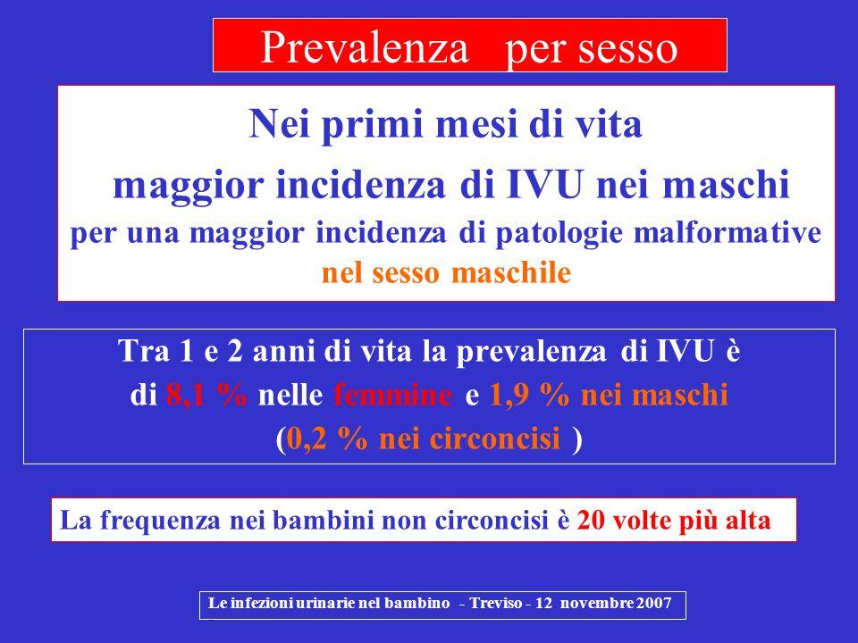 a 7 anni di età l8,4% delle femmine e l1,7 % dei maschi manifesta un primo episodio di IVU ( Cochrane : Williams e al 2006 ) Le infezioni urinarie nel bambino - Treviso - 12 novembre 2007 - Prevalenza per sesso