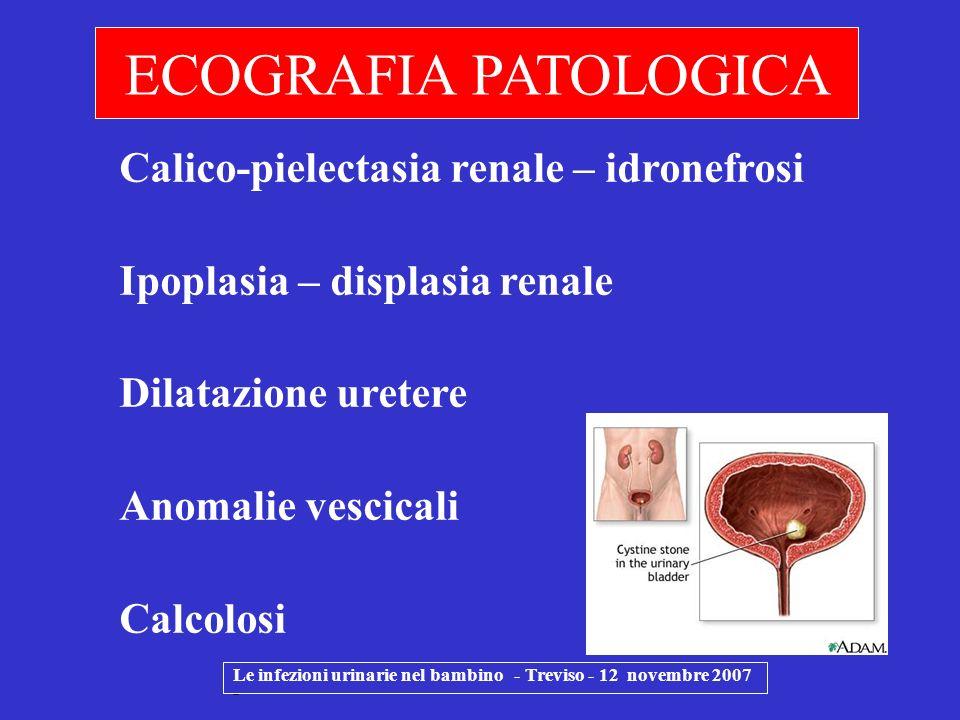 Le infezioni urinarie nel bambino - Treviso - 12 novembre 2007 - ECOGRAFIA PATOLOGICA Calico-pielectasia renale – idronefrosi Ipoplasia – displasia re