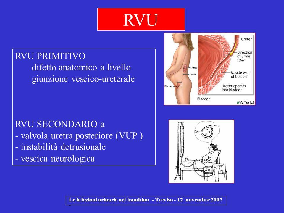 Le infezioni urinarie nel bambino - Treviso - 12 novembre 2007 - RVU RVU PRIMITIVO difetto anatomico a livello giunzione vescico-ureterale RVU SECONDA