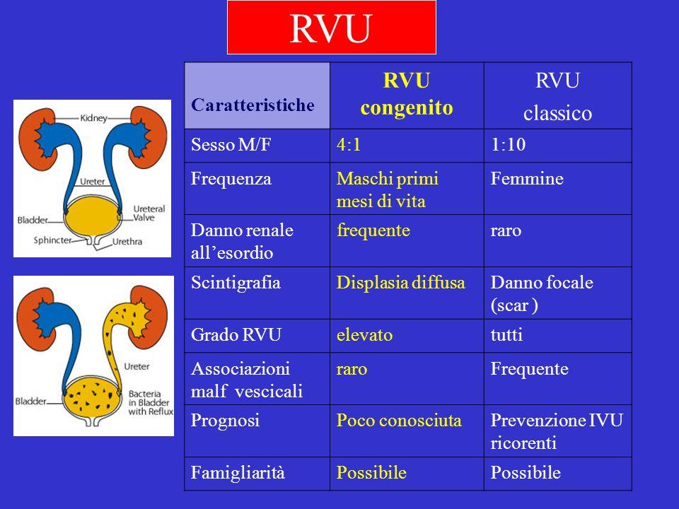 RVU Caratteristiche RVU congenito RVU classico Sesso M/F4:11:10 FrequenzaMaschi primi mesi di vita Femmine Danno renale allesordio frequenteraro Scint