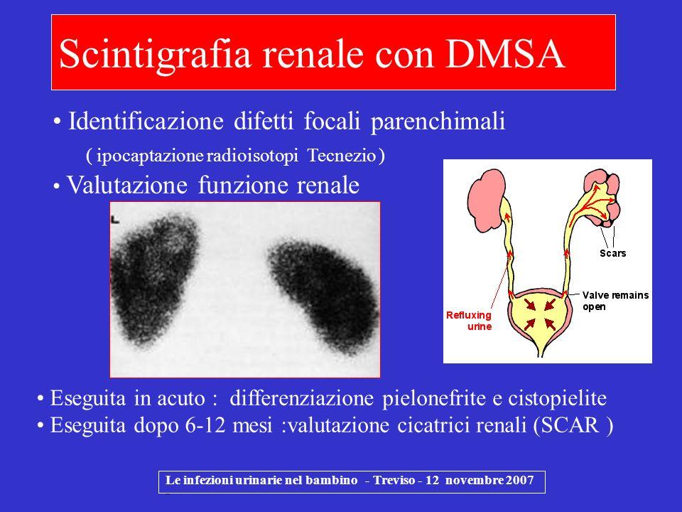 Le infezioni urinarie nel bambino - Treviso - 12 novembre 2007 - Scintigrafia renale con DMSA Identificazione difetti focali parenchimali ( ipocaptazi