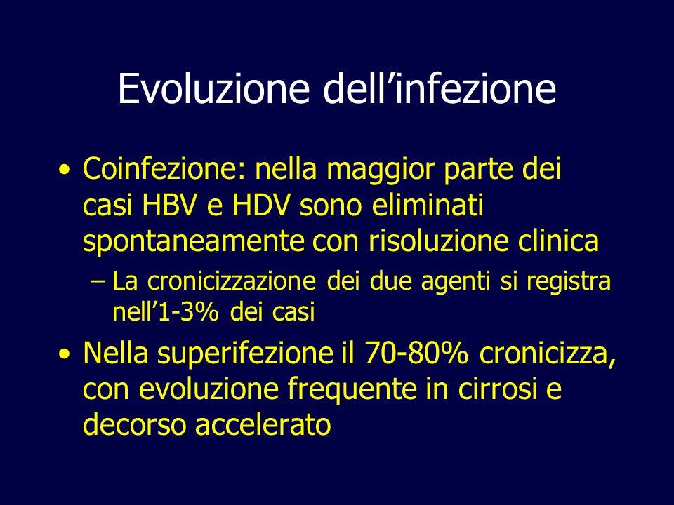 Evoluzione dellinfezione Coinfezione: nella maggior parte dei casi HBV e HDV sono eliminati spontaneamente con risoluzione clinica –La cronicizzazione