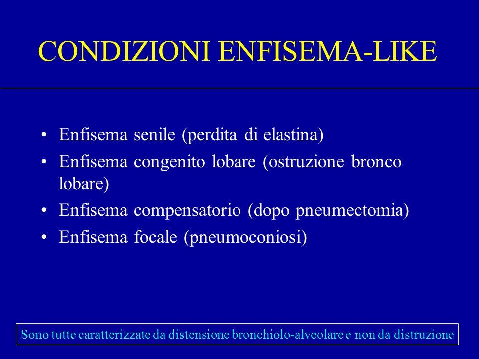 CONDIZIONI ENFISEMA-LIKE Enfisema senile (perdita di elastina) Enfisema congenito lobare (ostruzione bronco lobare) Enfisema compensatorio (dopo pneum