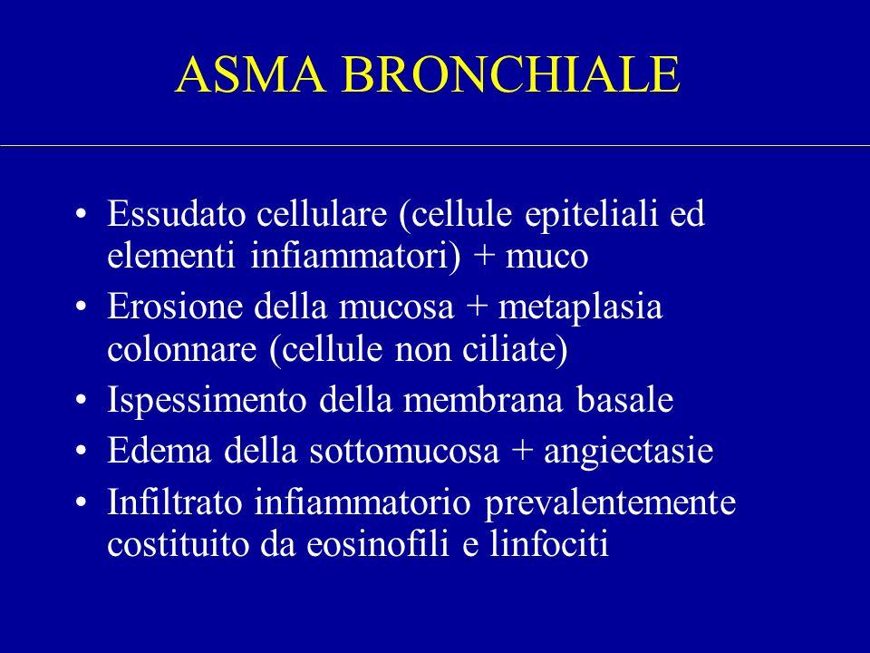 Essudato cellulare (cellule epiteliali ed elementi infiammatori) + muco Erosione della mucosa + metaplasia colonnare (cellule non ciliate) Ispessiment