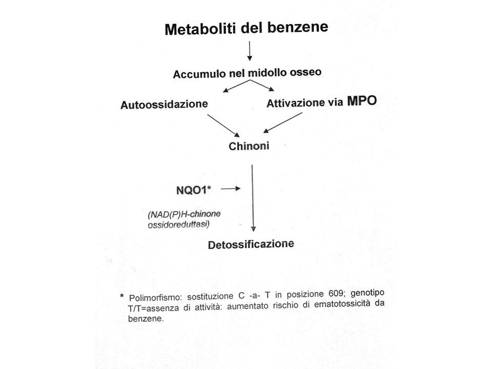 Monitoraggio biologico MetabolitaBEI (ACGIH) Prelievo Benzene-Sn.d.