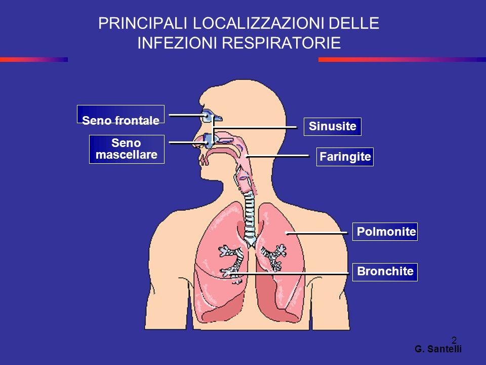 2 PRINCIPALI LOCALIZZAZIONI DELLE INFEZIONI RESPIRATORIE Seno frontale Seno mascellare Sinusite Faringite Polmonite Bronchite G. Santelli