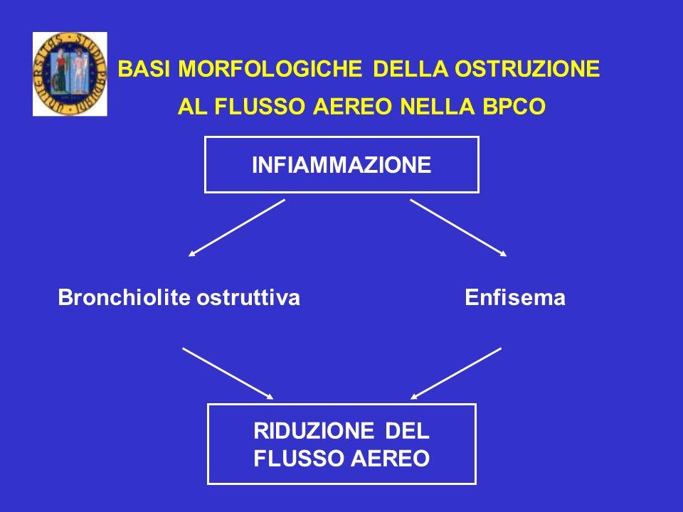BASI MORFOLOGICHE DELLA OSTRUZIONE AL FLUSSO AEREO NELLA BPCO INFIAMMAZIONE Bronchiolite ostruttivaEnfisema RIDUZIONE DEL FLUSSO AEREO