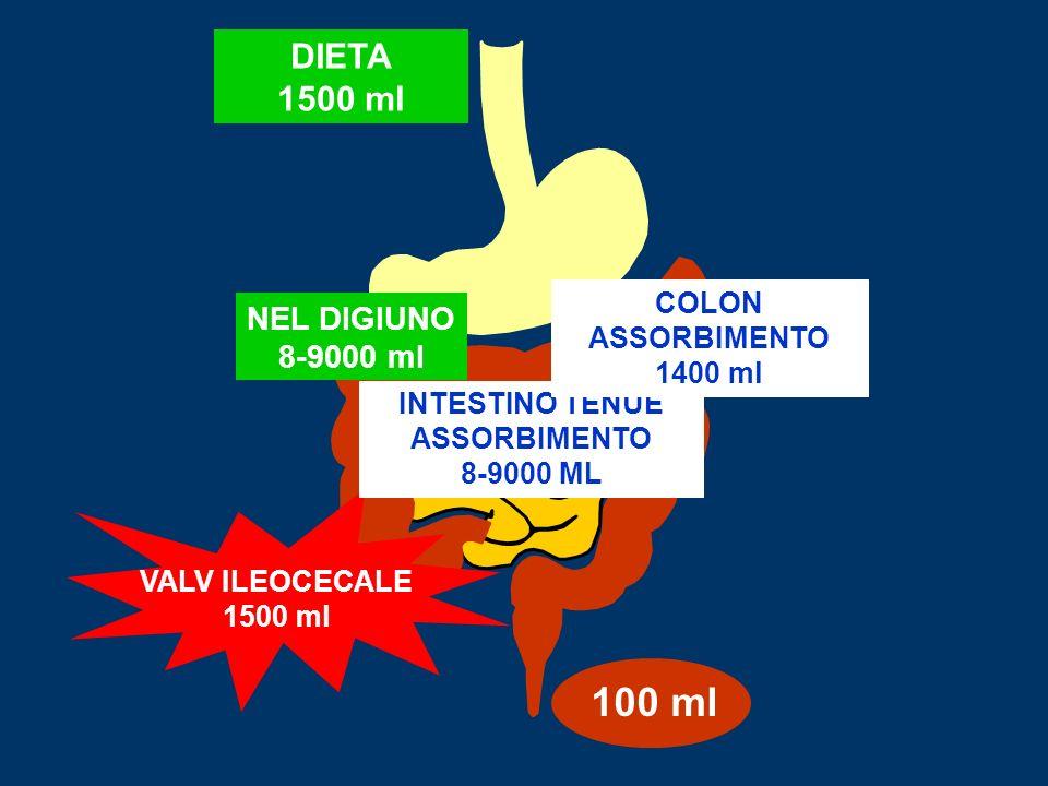 ANAMNESI VOLUME DELLE FECI –Alvo frequente, quantità scarsa, consistenza diminuita patologia colon distale –Quantita abbondante, consistenza normale/diminuita patologia colon dx o intestino tenue ASPETTO DELLE FECI Acquoso, poltaceo, presenza di parassiti/uova (tenia!), alimenti indigeriti, gocciole di grasso, sangue, muco SINTOMI ASSOCIATI SIST.