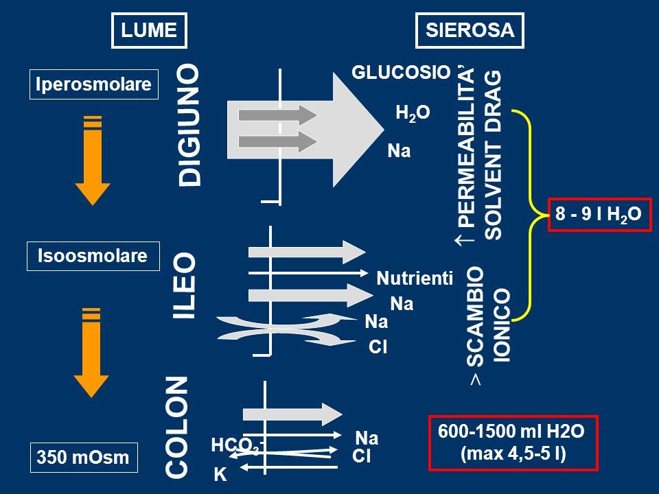 DIGIUNO ILEO COLON 350 mOsm H2OH2O Na GLUCOSIO 8 - 9 l H 2 O Na Nutrienti Na Cl 600-1500 ml H2O (max 4,5-5 l) Na Cl K HCO 3 - > SCAMBIO IONICO Isoosmo