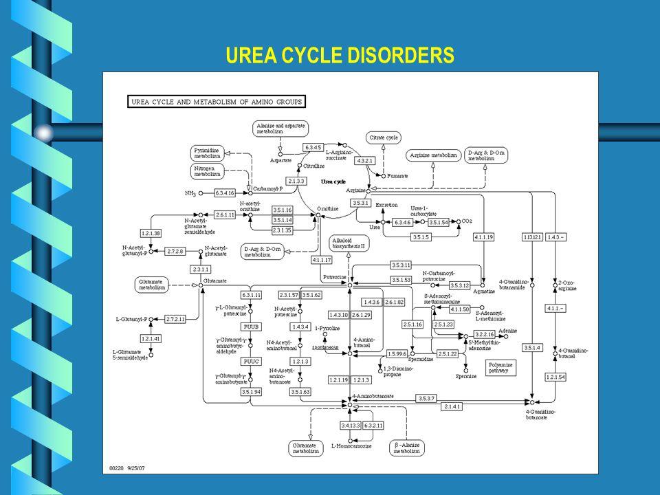 UREA CYCLE DISORDERS