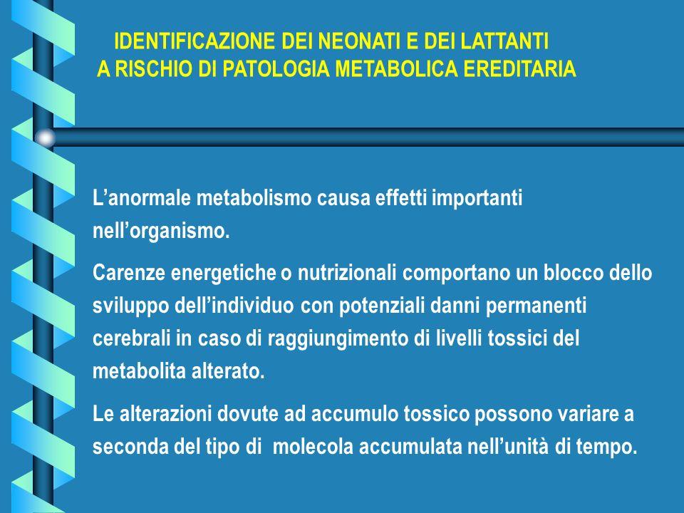 Lanormale metabolismo causa effetti importanti nellorganismo. Carenze energetiche o nutrizionali comportano un blocco dello sviluppo dellindividuo con