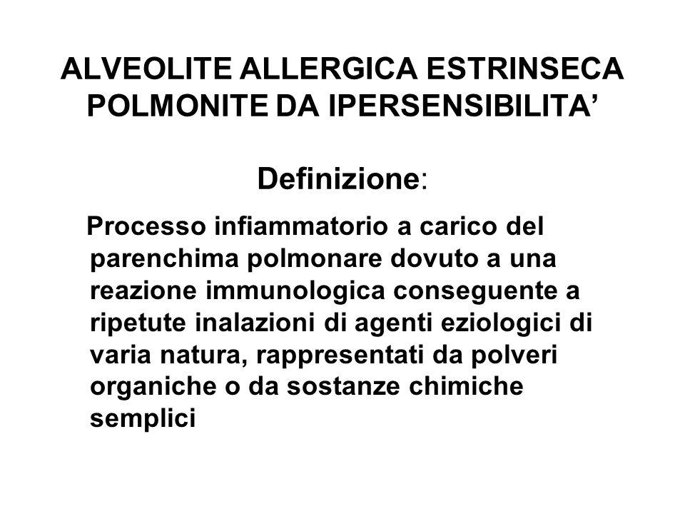 ALVEOLITE ALLERGICA ESTRINSECA POLMONITE DA IPERSENSIBILITA Definizione: Processo infiammatorio a carico del parenchima polmonare dovuto a una reazion
