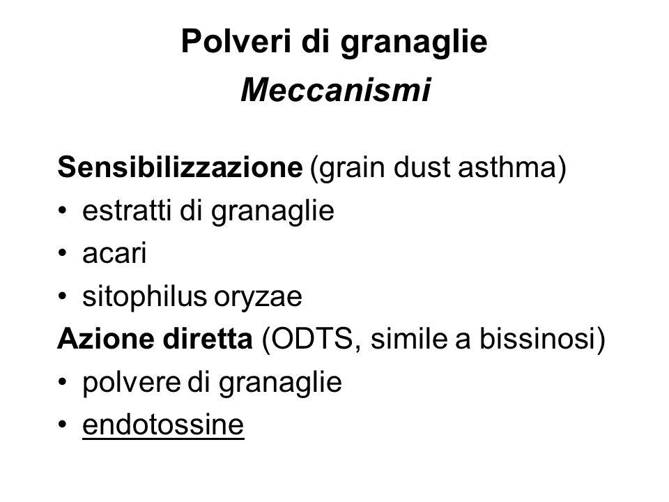 Polveri di granaglie Meccanismi Sensibilizzazione (grain dust asthma) estratti di granaglie acari sitophilus oryzae Azione diretta (ODTS, simile a bis