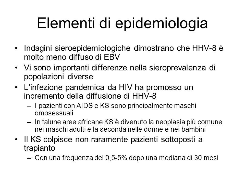 Elementi di epidemiologia Indagini sieroepidemiologiche dimostrano che HHV-8 è molto meno diffuso di EBV Vi sono importanti differenze nella sieroprevalenza di popolazioni diverse Linfezione pandemica da HIV ha promosso un incremento della diffusione di HHV-8 –I pazienti con AIDS e KS sono principalmente maschi omosessuali –In talune aree africane KS è divenuto la neoplasia più comune nei maschi adulti e la seconda nelle donne e nei bambini Il KS colpisce non raramente pazienti sottoposti a trapianto –Con una frequenza del 0,5-5% dopo una mediana di 30 mesi