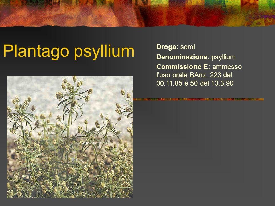 Plantago psyllium Droga: semi Denominazione: psyllium Commissione E: ammesso luso orale BAnz. 223 del 30.11.85 e 50 del 13.3.90