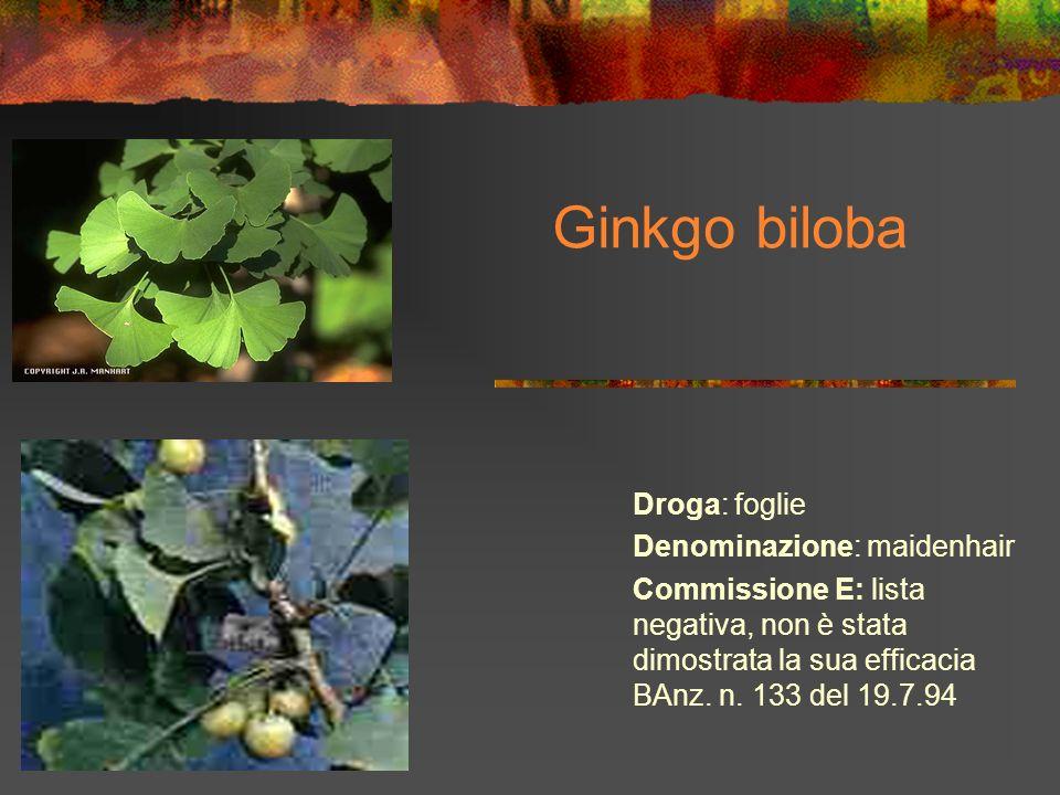 Ginkgo biloba Droga: foglie Denominazione: maidenhair Commissione E: lista negativa, non è stata dimostrata la sua efficacia BAnz. n. 133 del 19.7.94