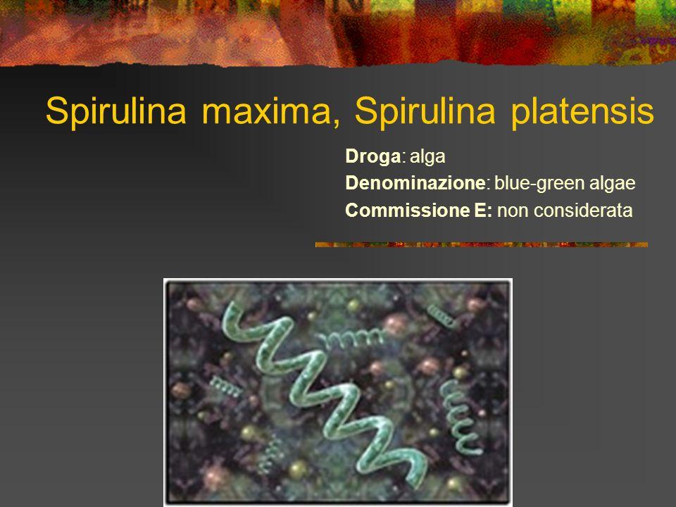 Spirulina maxima, Spirulina platensis Droga: alga Denominazione: blue-green algae Commissione E: non considerata