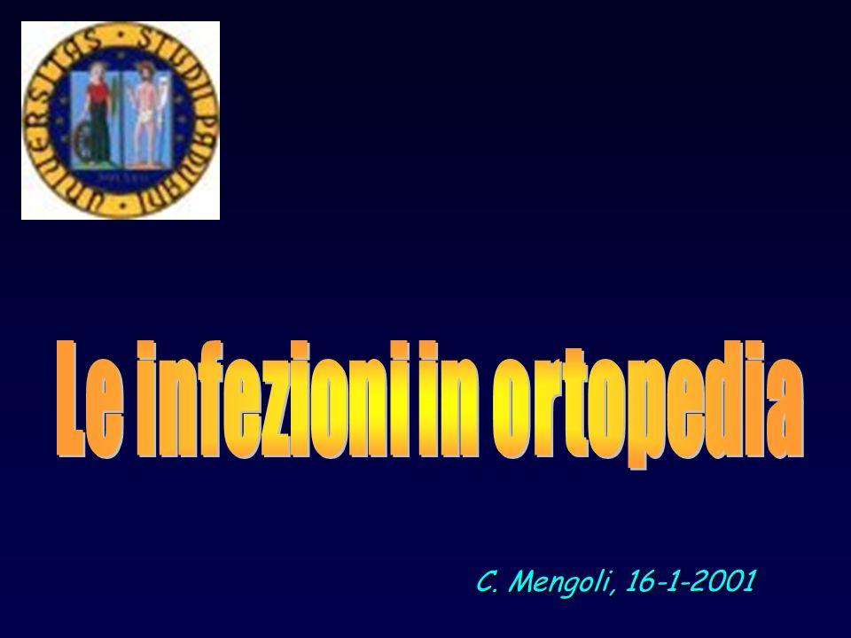 C. Mengoli, 16-1-2001