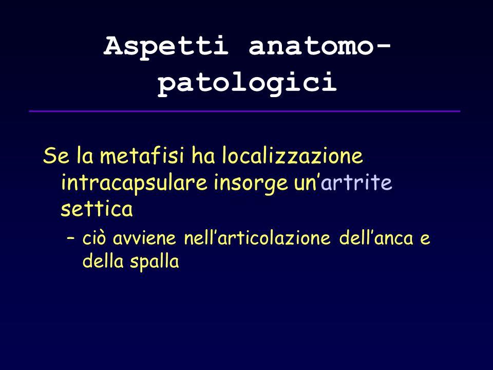 Aspetti anatomo- patologici Se la metafisi ha localizzazione intracapsulare insorge unartrite settica –ciò avviene nellarticolazione dellanca e della