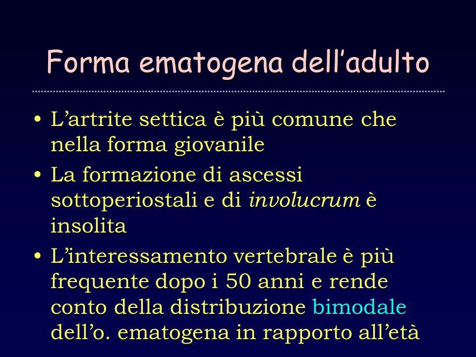 Forma ematogena delladulto Lartrite settica è più comune che nella forma giovanileLartrite settica è più comune che nella forma giovanile La formazion