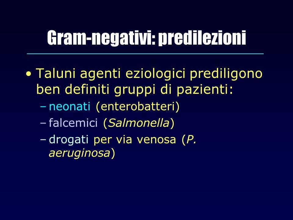 Gram-negativi: predilezioni Taluni agenti eziologici prediligono ben definiti gruppi di pazienti: –neonati (enterobatteri) –falcemici (Salmonella) –dr