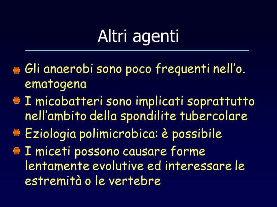 Altri agenti Gli anaerobi sono poco frequenti nello. ematogena I micobatteri sono implicati soprattutto nellambito della spondilite tubercolare Eziolo
