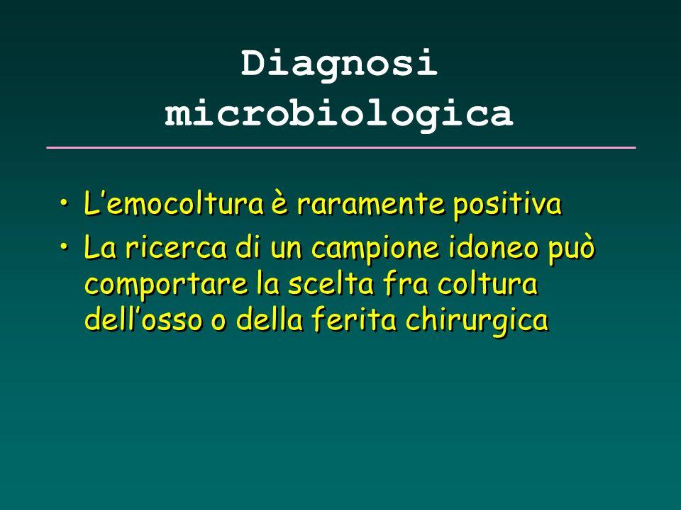 Diagnosi microbiologica Lemocoltura è raramente positiva La ricerca di un campione idoneo può comportare la scelta fra coltura dellosso o della ferita