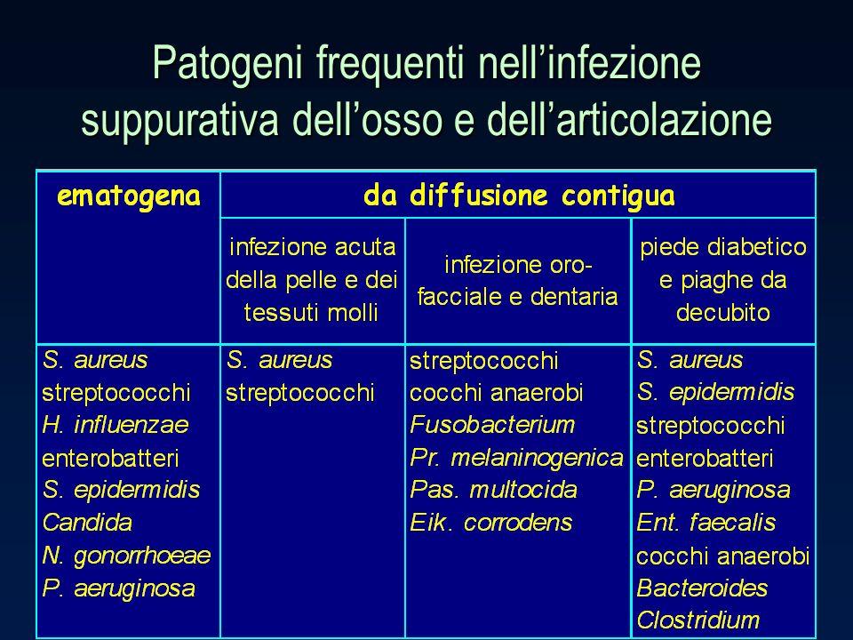 Patogeni frequenti nellinfezione suppurativa dellosso e dellarticolazione