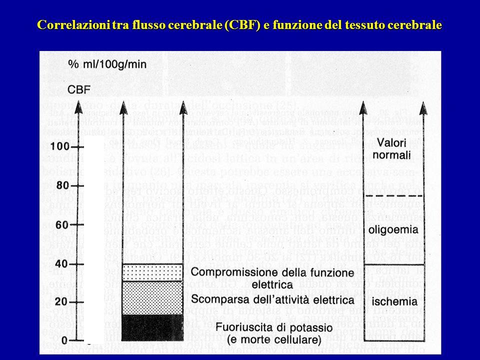 Correlazioni tra flusso cerebrale (CBF) e funzione del tessuto cerebrale