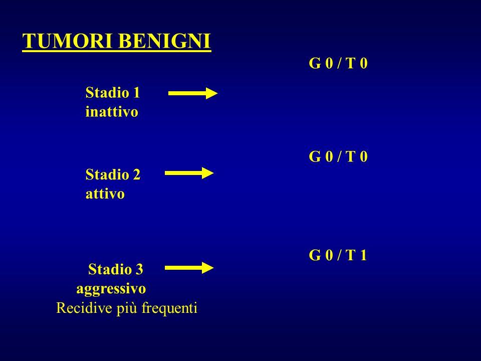 TUMORI BENIGNI Stadio 1 inattivo Stadio 2 attivo Stadio 3 aggressivo Recidive più frequenti G 0 / T 0 G 0 / T 1