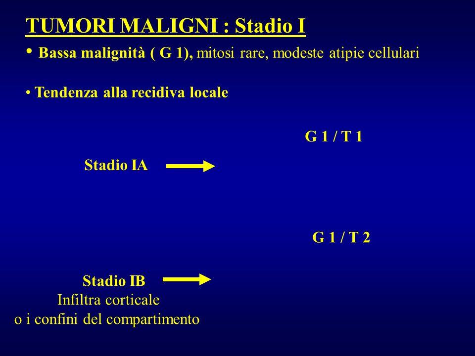 TUMORI MALIGNI : Stadio II Alta malignità ( G 2), mitosi numerose, elevata atipia nucleare, alto rapporto cellule/matrice, molto indifferenziato, spesso metastasi Stadio IIA Stadio IIB Infiltra corticale o i confini del compartimento G 2 / T 1 G 2 / T 2