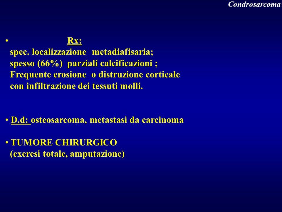 Rx: spec. localizzazione metadiafisaria; spesso (66%) parziali calcificazioni ; Frequente erosione o distruzione corticale con infiltrazione dei tessu