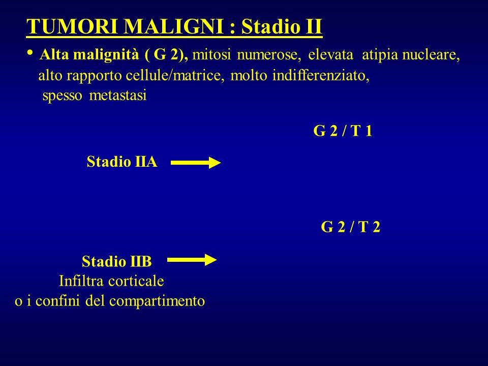 TUMORI MALIGNI : Stadio II Alta malignità ( G 2), mitosi numerose, elevata atipia nucleare, alto rapporto cellule/matrice, molto indifferenziato, spes