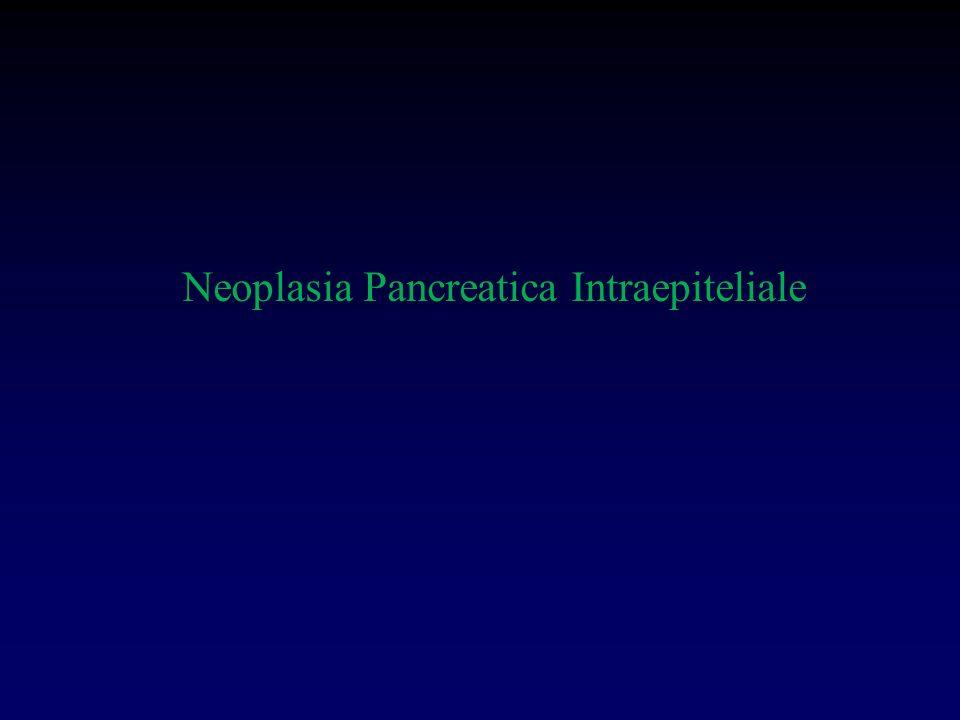 Neoplasia Pancreatica Intraepiteliale