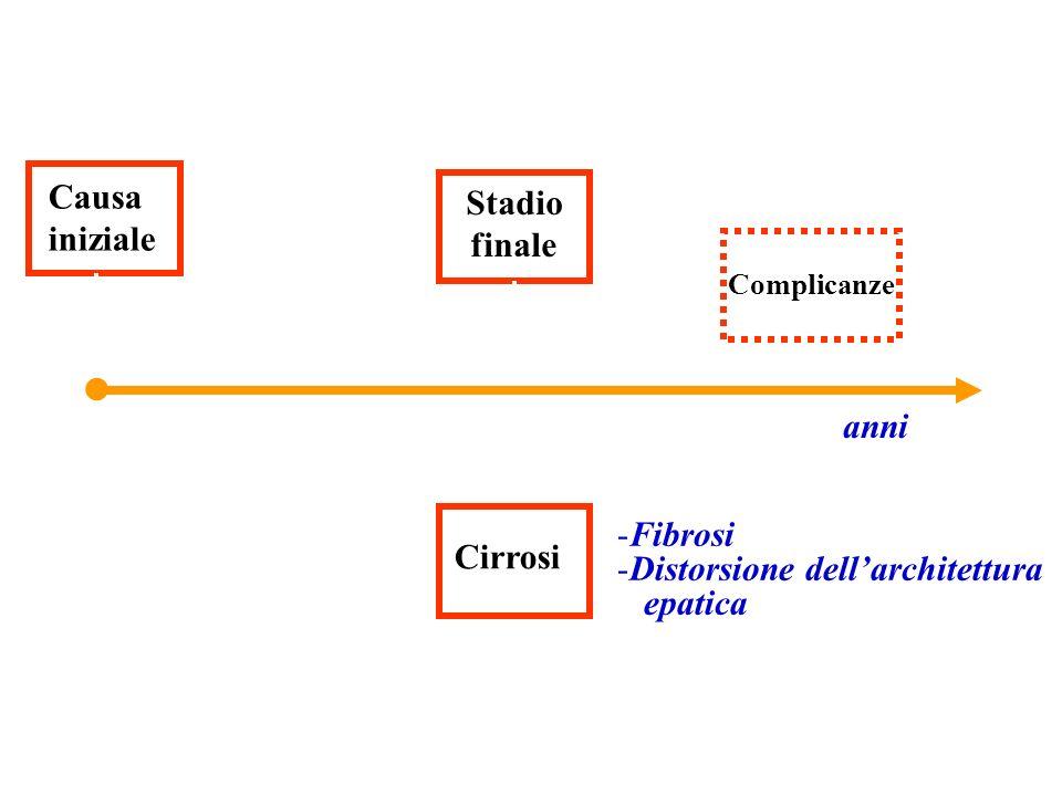 Causa iniziale Stadio finale Complicanze anni Cirrosi -Fibrosi -Distorsione dellarchitettura epatica