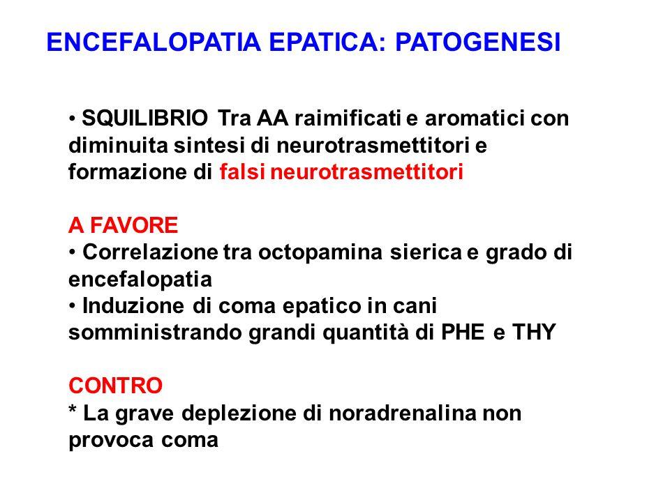ENCEFALOPATIA EPATICA: PATOGENESI SQUILIBRIO Tra AA raimificati e aromatici con diminuita sintesi di neurotrasmettitori e formazione di falsi neurotra