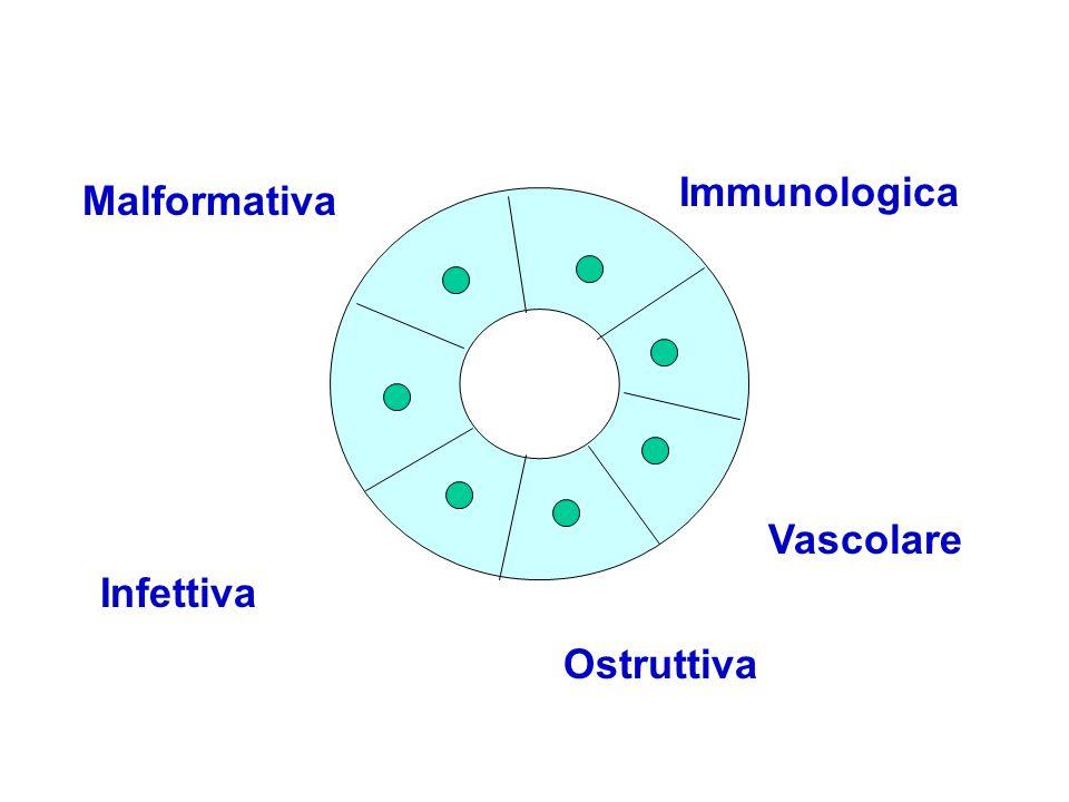 Malformativa Immunologica Infettiva Vascolare Ostruttiva
