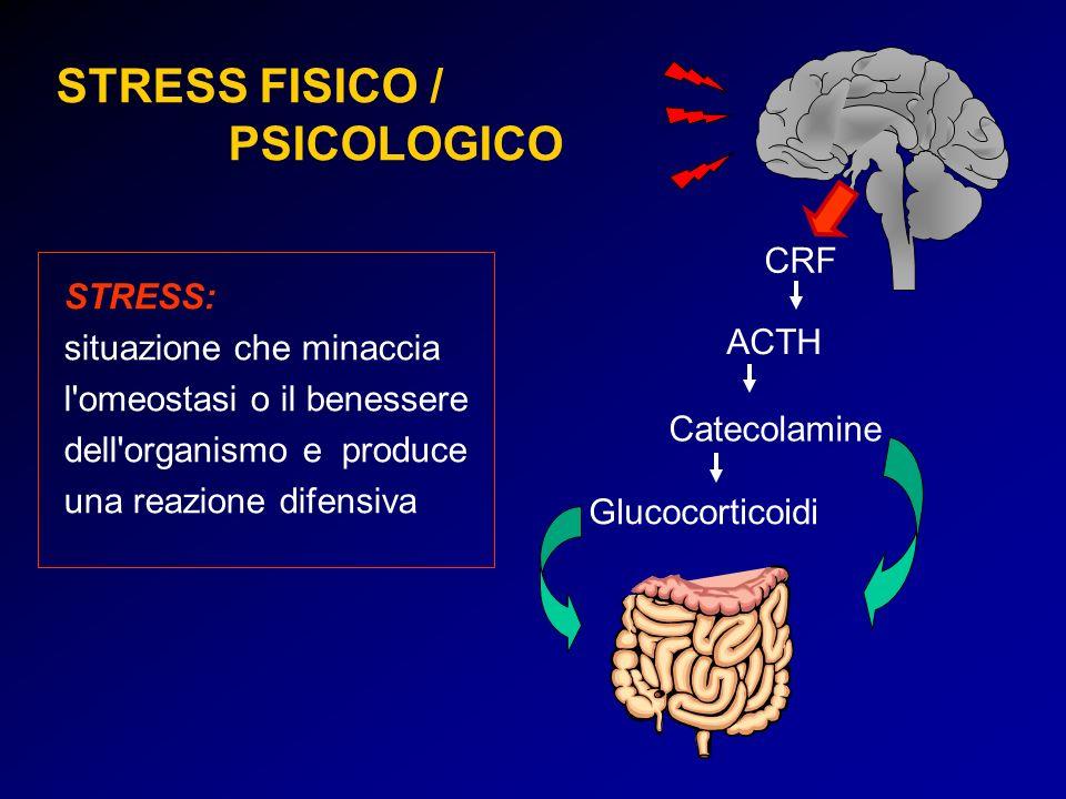 STRESS FISICO / PSICOLOGICO CRF Catecolamine Glucocorticoidi ACTH STRESS: situazione che minaccia l'omeostasi o il benessere dell'organismo e produce