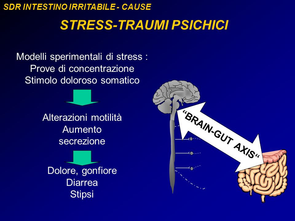 SDR INTESTINO IRRITABILE - CAUSE STRESS-TRAUMI PSICHICI BRAIN-GUT AXIS Modelli sperimentali di stress : Prove di concentrazione Stimolo doloroso somat