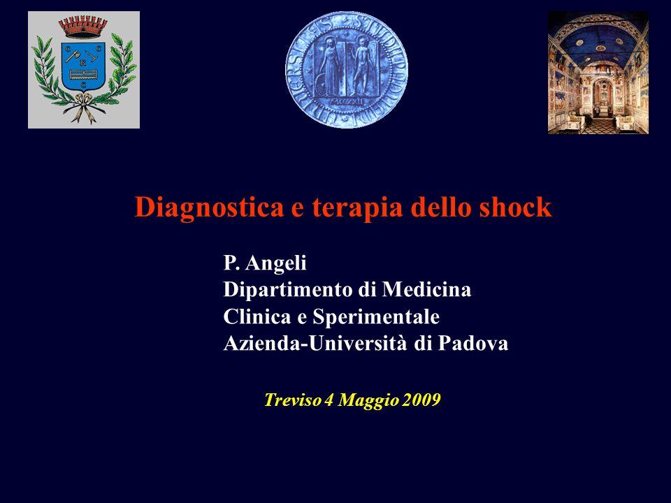 P. Angeli Dipartimento di Medicina Clinica e Sperimentale Azienda-Università di Padova Diagnostica e terapia dello shock Treviso 4 Maggio 2009