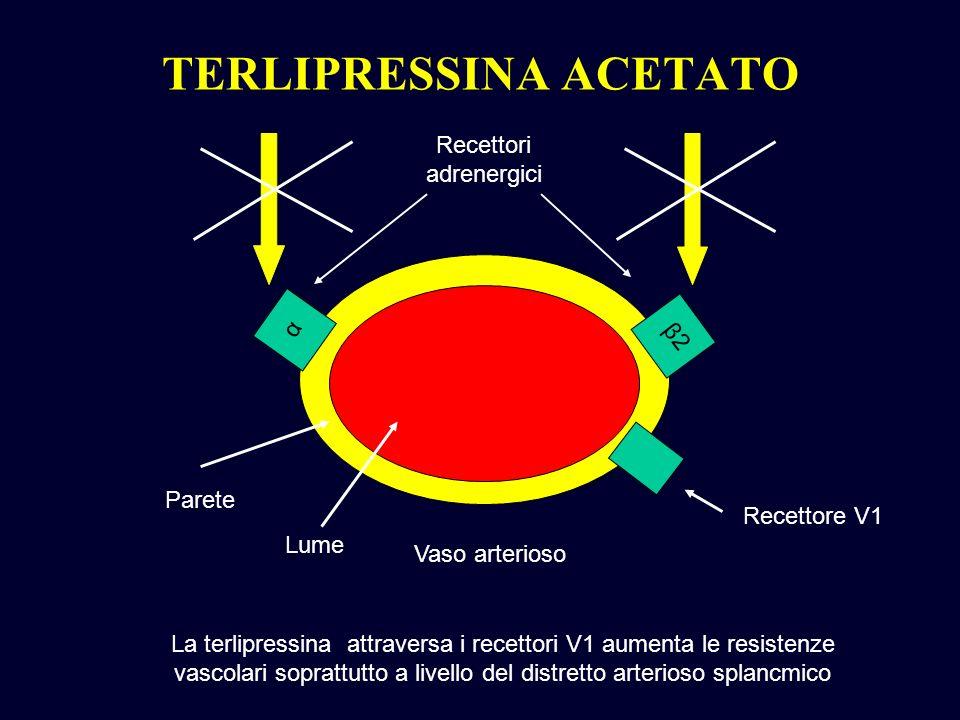 α β2β2 Vaso arterioso Parete Recettori adrenergici La terlipressina attraversa i recettori V1 aumenta le resistenze vascolari soprattutto a livello de