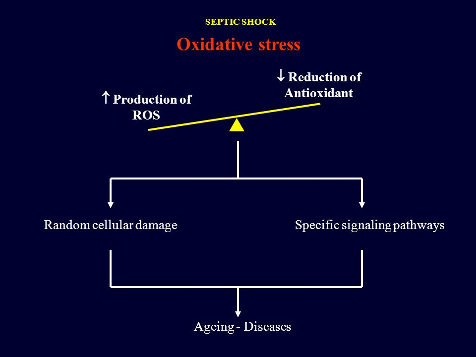 Oxidative stress Production of ROS Reduction of Antioxidant Random cellular damageSpecific signaling pathways Ageing - Diseases SEPTIC SHOCK