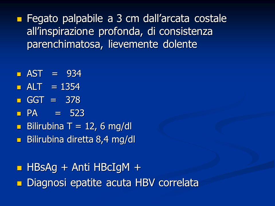 Fegato palpabile a 3 cm dallarcata costale allinspirazione profonda, di consistenza parenchimatosa, lievemente dolente Fegato palpabile a 3 cm dallarcata costale allinspirazione profonda, di consistenza parenchimatosa, lievemente dolente AST = 934 AST = 934 ALT = 1354 ALT = 1354 GGT = 378 GGT = 378 PA = 523 PA = 523 Bilirubina T = 12, 6 mg/dl Bilirubina T = 12, 6 mg/dl Bilirubina diretta 8,4 mg/dl Bilirubina diretta 8,4 mg/dl HBsAg + Anti HBcIgM + HBsAg + Anti HBcIgM + Diagnosi epatite acuta HBV correlata Diagnosi epatite acuta HBV correlata