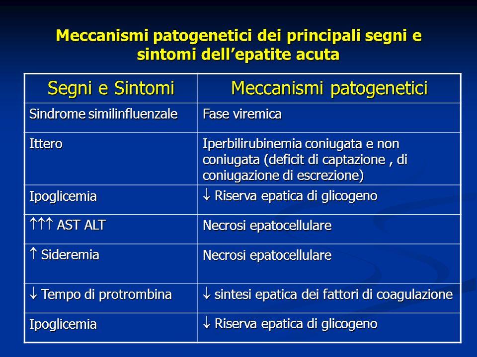 Epatite acute : forme cliniche Epatite acuta sintomatica oligosintomatica (anitterica) Epatite acuta protratta 2-8 settimane > 8 settimane Epatite acuta colestatica Epatite acuta fulminante > 8 settimane