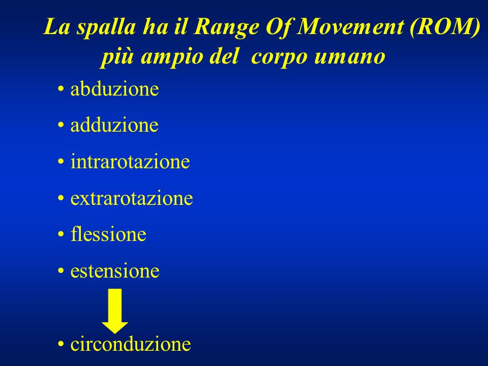 La spalla ha il Range Of Movement (ROM) più ampio del corpo umano abduzione adduzione intrarotazione extrarotazione flessione estensione circonduzione